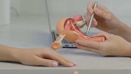 11 fatores de risco para o câncer de colo uterino